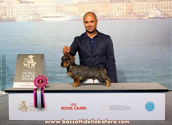 FCI World Dog Show Helsinki 2014