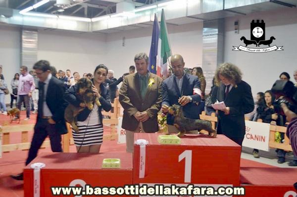 Expo Messina 26 ottobre 2015