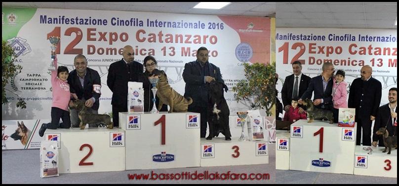 catanzaro-2016