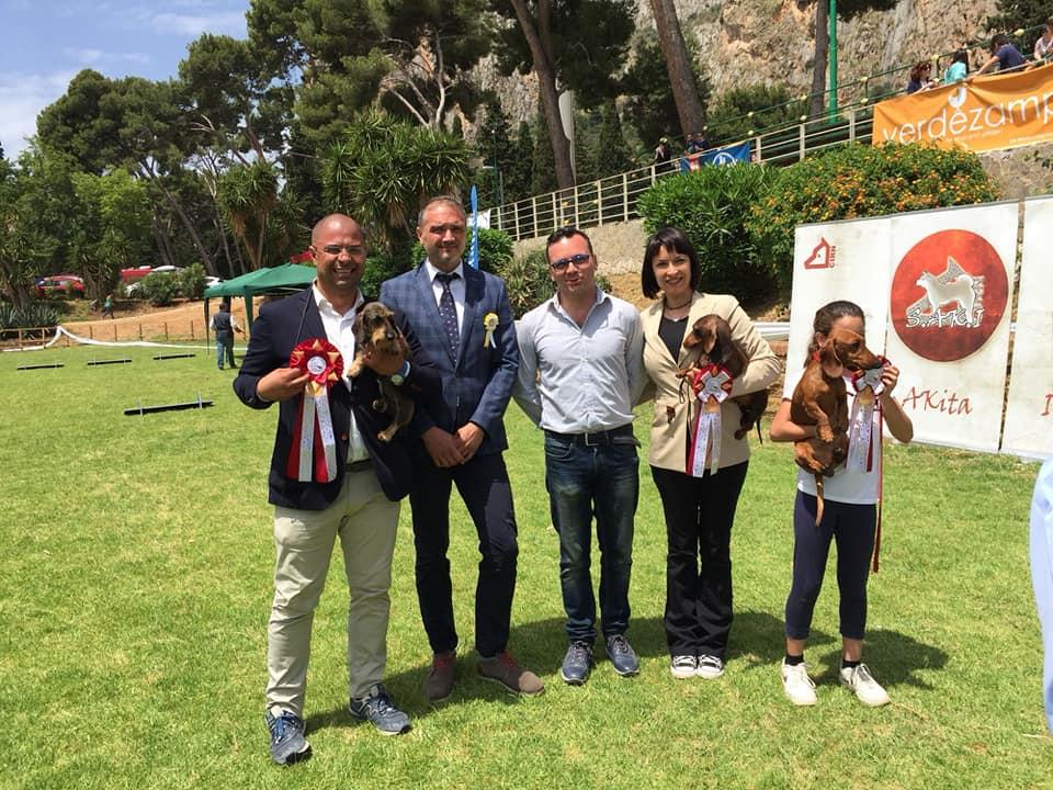 Raduno bassotti Palermo 2018